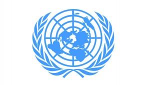 UNlogoweb