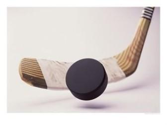 New pro league shoots high goals for women's hockey