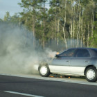 Florida - Spring 2011 - 56