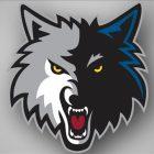Timberwolves show improvement in 2017 diversity report card