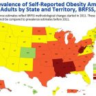 State ranks about average in America's 'obesity epidemic'