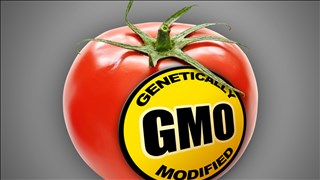 Labeling GMOs allows consumers to avoid them