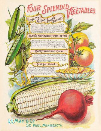 A winter gardening checklist for springtime