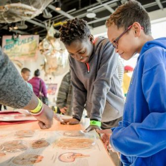 Science Fusion: African Americans in Science @ Science Museum of Minnesota
