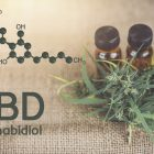 How safe is CBD oil?