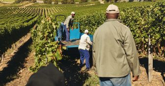 'Black Farmers' gear up for legal fight after appeals court setback