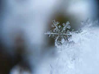 Contending with the winter blues, or SAD